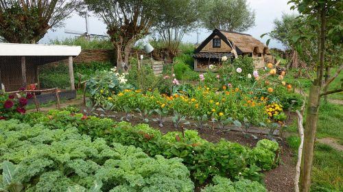 riethuis reed garden