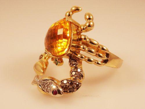 ring jewel women's clothing