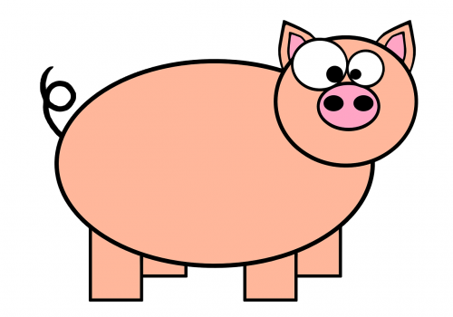 ring-tailed pig pork