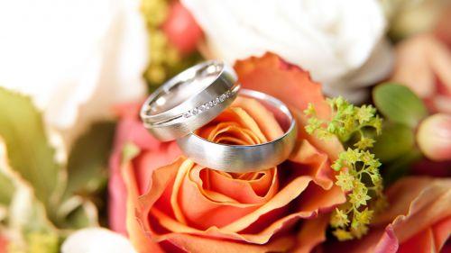 rings rose bloom bride