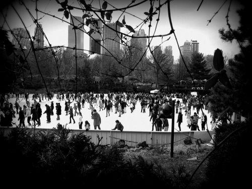 kyla,centrinis parkas,dangus,parkas,ežeras,ledo čiuožykla,žiema