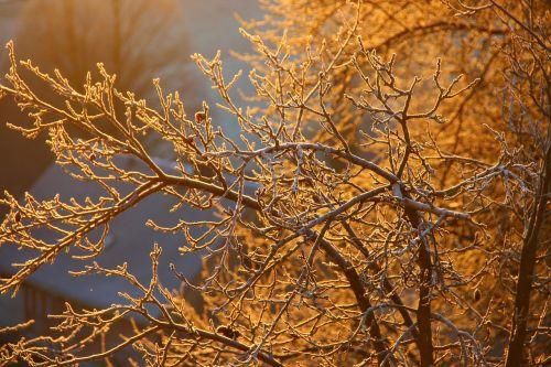 ripe autumn aesthetic
