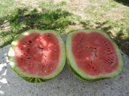 ripe watermelon watermelon fruit