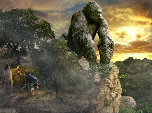 risk fear gorilla