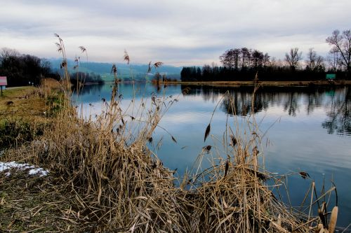river reuss nature conservation