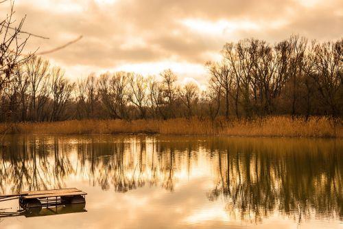 upė,kraštovaizdis,gamta,gamtos kraštovaizdis,vanduo,tvenkinys,lauke,miškas