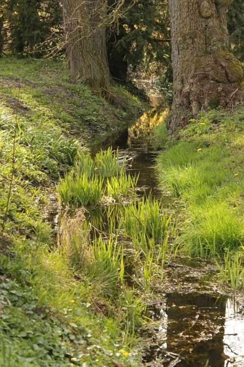 river the brook park