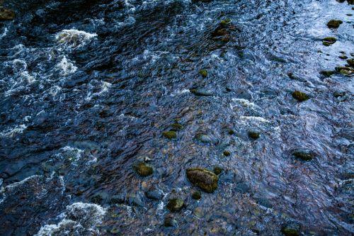 upė, vanduo, akmuo, elementas, šlapias, srautas, natūralus, gamta, upė