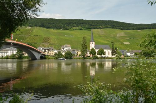 river moselle wine
