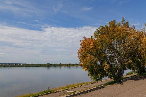 river sky tree