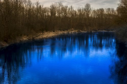 river trees mirroring