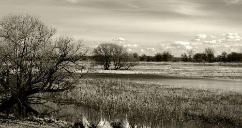 river nature bank