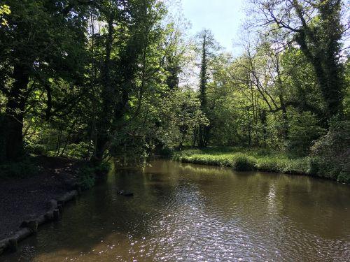 upė,saulė,gamta,vanduo,lauke,parkas,medis,saulėtas,kraštovaizdis