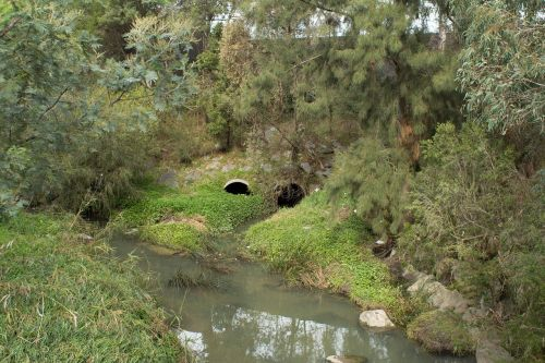 river tunnels nature