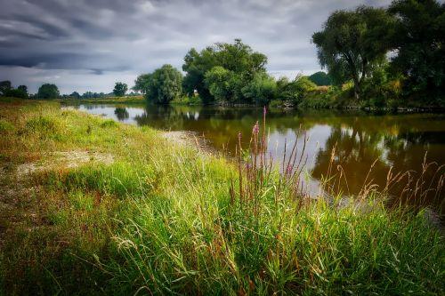 upė,bankas,žolė,vanduo,gamta,upės kraštovaizdis,kraštovaizdis