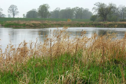 river  landscape  scrubs