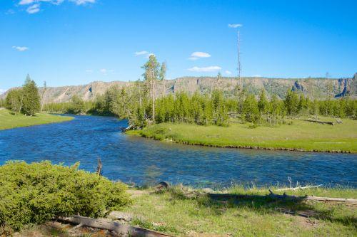 River Runs Through Yellowstone