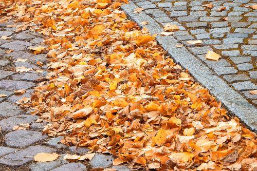 road cobblestones sidewalk