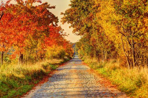 road lane away