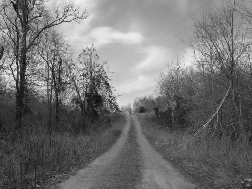 road country black and white