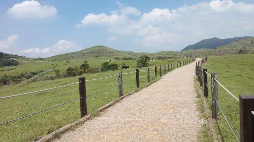 road field fences