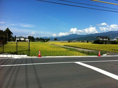 road field clear skies