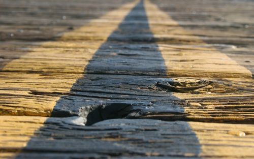 road vanishing point wood