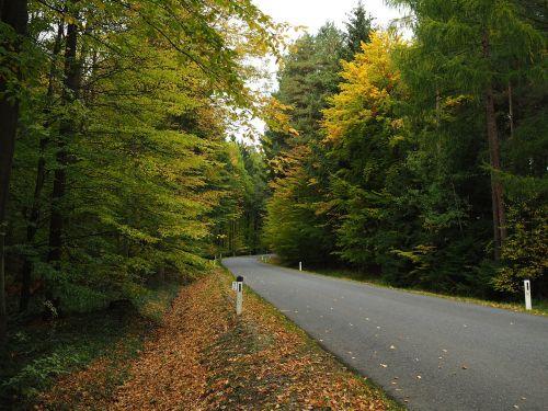 road away nature