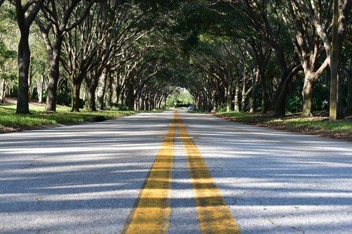 road  pavement  asphalt