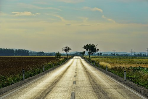 road  just  endless