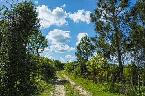 road  cloud  landscape