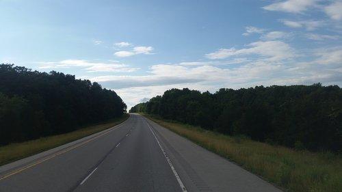 road  turning  trees