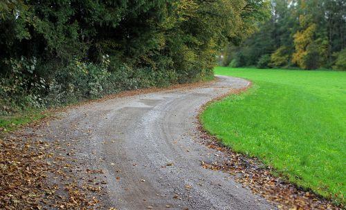 kelias,toli,gamta,ruduo,pieva,žalias,juostos,purvo kelias,komercinis kelias