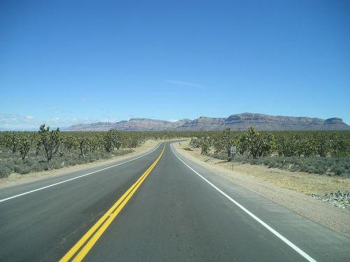 kelias,maršrutas,66,vienatvė,usa,dykuma,kaktusas,Arizona