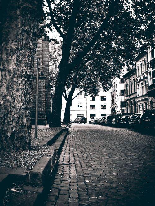 road cobblestones black and white