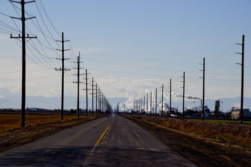 Road Surrounded By Telephone Poles