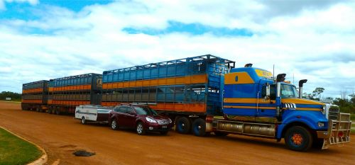 road train truck transportation