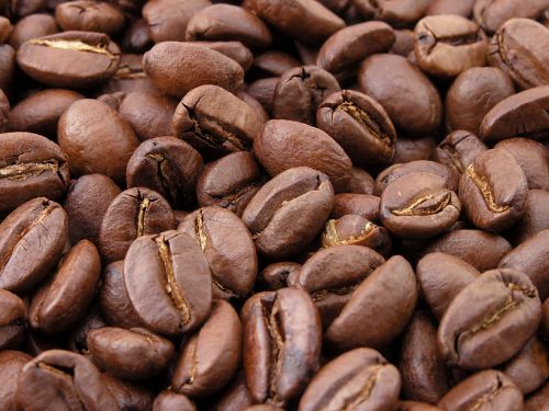 Roasted Coffee Beans Portrait