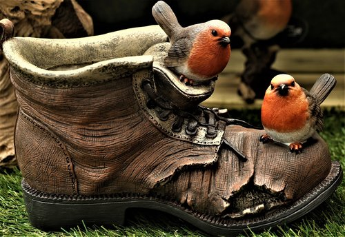 robin  shoe  boot