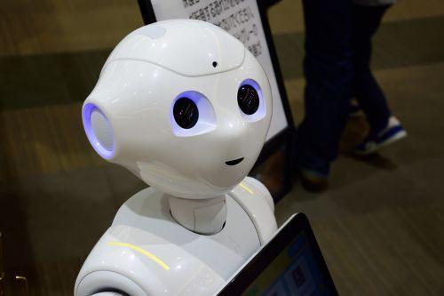 robot japan mall