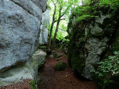 rock cleft rock sheep mountain