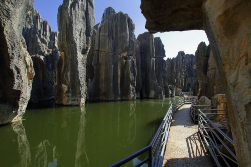 rock stone forest china