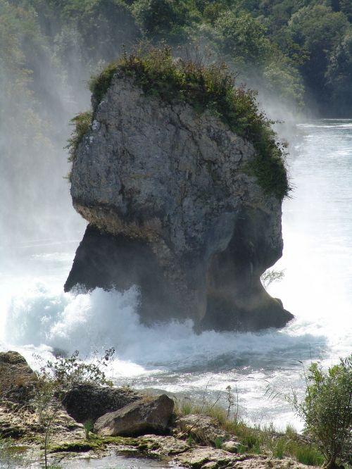 rock surf primeval force