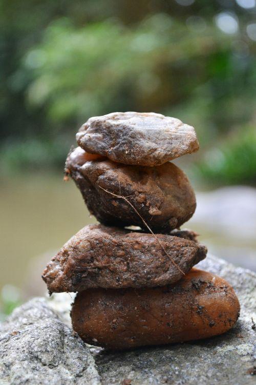 uolienų formavimas,akmenys,upių uolos,upė,Šri Lanka,ceilonas