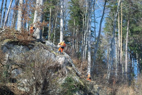 rock removal work  workers  out