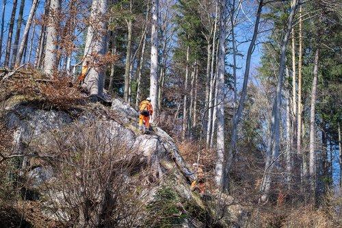 rock removal work  rock removal  landscape management