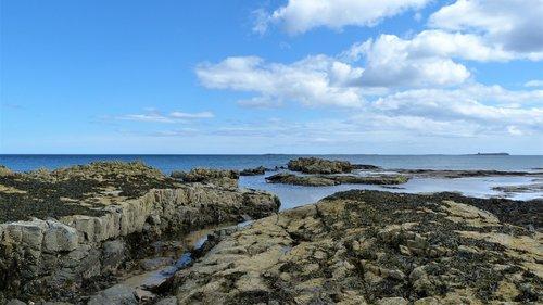 rockpool  rocks  coast