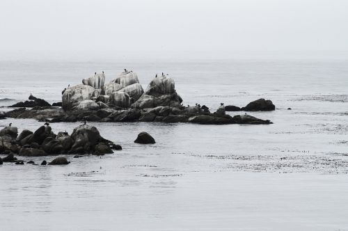 rocks water peaceful