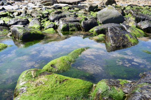 rocks water ocean
