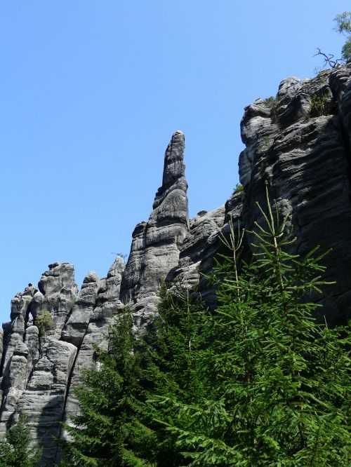 rocks forest nature